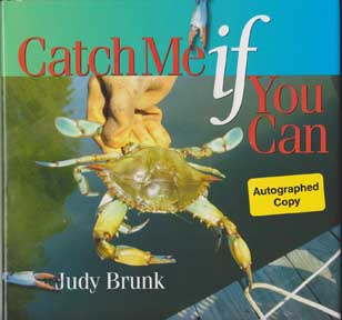 catch me if you can book essay Linguistics, classics and related subjects - catch me if you can frank abagnale's representation of life in the in the second book of wharton's house.